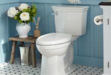 صورة صدمة لازم تعرفها  .. المرحاض قد يصيبك بـ كورونا