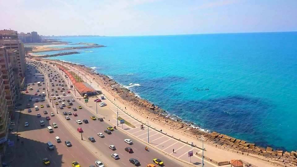 صورة 12 فندقا بالاسكندرية حصلوا على الشهادة الصحية لعودة السياحة الداخلية