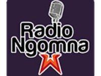صورة تحميل تطبيق راديو نجومنا للبث الإذاعى